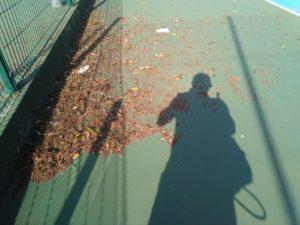 tenislife-sapobla-84